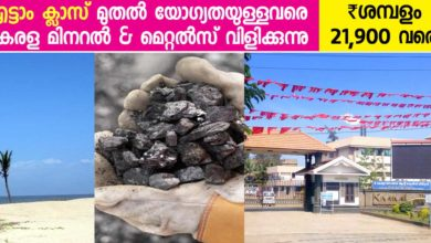 Photo of Kerala Minerals and Metals Recruitment for Various Posts