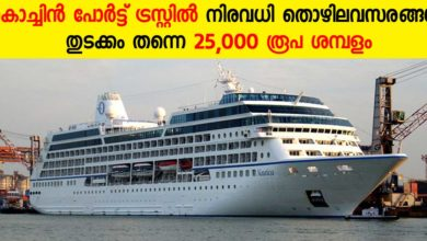 Photo of Cochin Port trust Recruitment: Apply online for Engineering assistant vacancies
