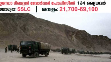 Photo of Indo-Tibetan Border Police Force (ITBP):Apply Online for 134 CONSTABLE (DRIVER) Vacancies