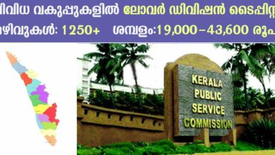 Photo of Kerala PSC Recruitment 2019: Apply Now for Lower Division Typist Vacancies in All Districts