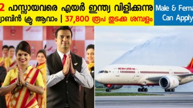 Photo of Air India Recruitment 2019: Apply Online Now for 42 Cabin Crew Vacancies