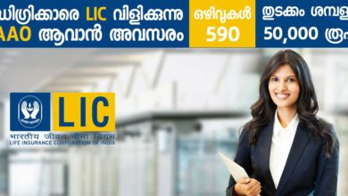 Photo of Life Insurance Corporation of India (LIC) Recruitment 2019: Apply online Now for 590 Assistant Administrative Officer Vacancies