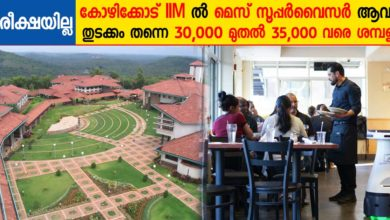 Photo of Indian institute of Management Kozhikode (IIMK) Recruitment 2020: Apply Online Now for Mess supervisor on contract basis.